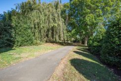 3. Tree Lined Drive